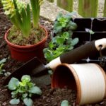 Gardening scene with plants, pots, soil, and garden tools