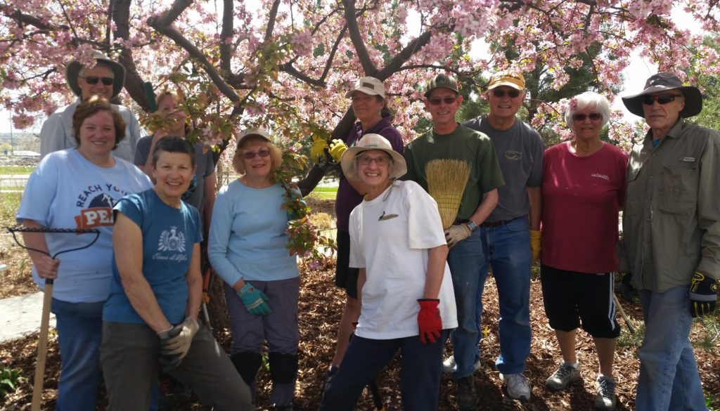 Group of Master Gardeners in front of tree with pink blossoms